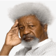 Soyinka @ 84: The Pursuit of Truth
