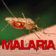 Malaria infection rises in high burden countries