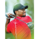 Woods rises 155 places in World Golf Rankings