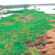 'River Niger becoming conduit pipe'