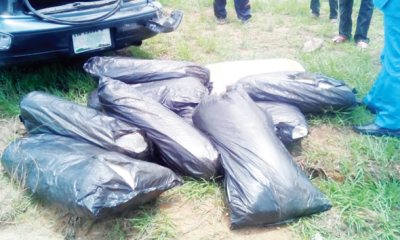NDLEA arrests man with 218kg of Indian Hemp