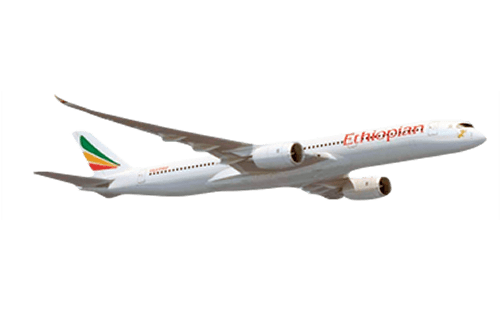 Ethiopian Airlines for Bahrain