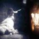 'Redemption': Navigating a dark space from Olagunju's lens