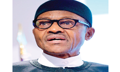 Buhari lauds Diaspora Nigerians on peace
