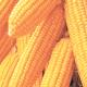 Disquiet over Nigeria's maize import