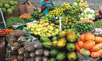 Exploiting 'Green House Project' in Nigeria's agriculture