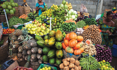 GMO: Farmers awaiting crops' commercialisation