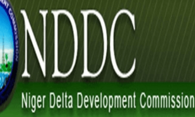 Govt budgets N155bn interventions in Niger Delta
