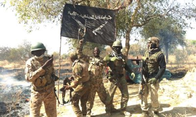 Boko Haram kills one, sets Borno village ablaze