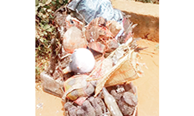 Herbalist docked for allegedly defrauding man of 4.5m
