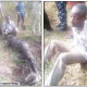 I killed, buried corporal to avoid returning his N120, 000, says community leader