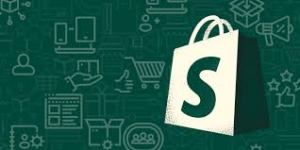 How Productive and Cost-Effective Are Shopify Themes?