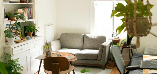 How To Get Rid Of Ants In Your Home By Adopting Right Pest Control Services?