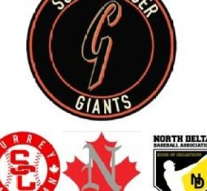 giants 3 association logo