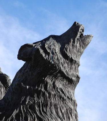 Wolf sculpture at Mackay Stadium, University of Nevada, Reno
