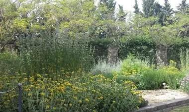 Lezioni di giardinaggio allOrto botanico dellUniversit della Tuscia