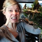Farmers Market Challenge: They Stung Me!