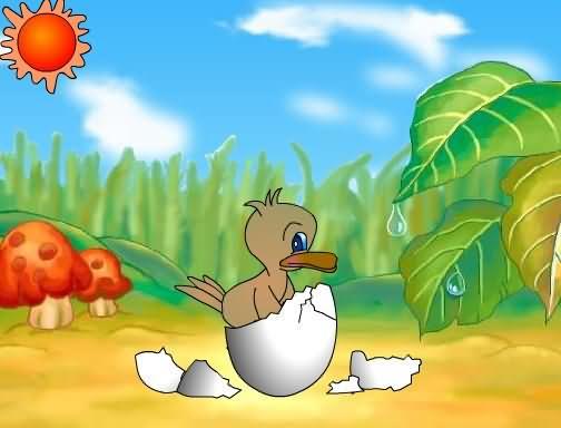 《丑小鴨》參考圖片,新學網