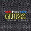 Hr 218 permit application new york state for home info