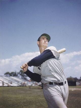 Ted Williams, circa 1955.
