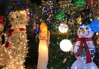 Visit Dyker Heights Christmas Lights: All The Info