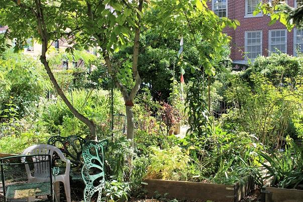 Garden_houses_NYC_blog.jpg