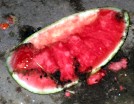 Watermelon and dog shit