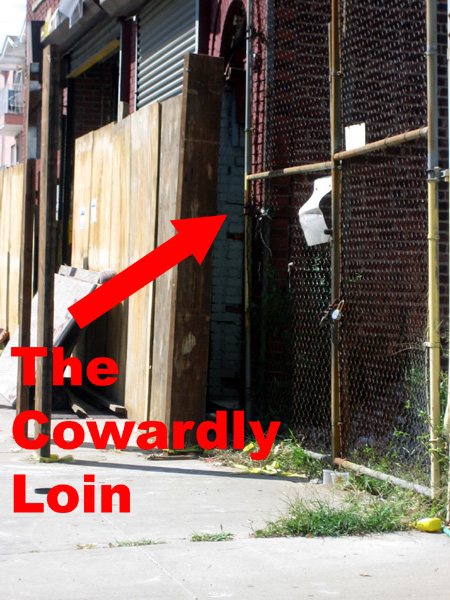 The Cowardly Loin