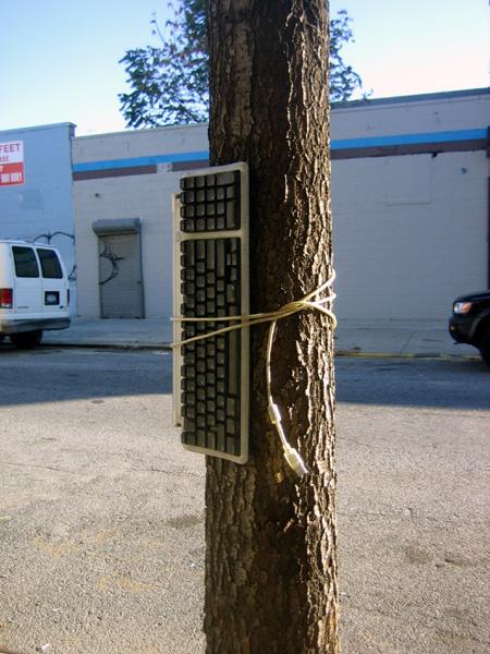 Green Street Peripheral Bondage