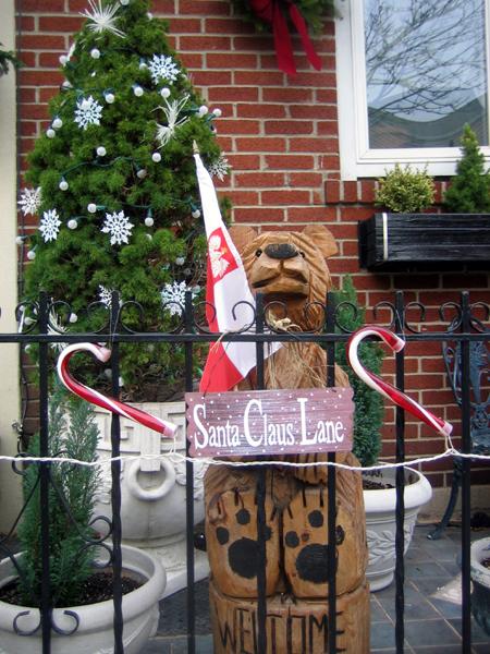 Java Street Bear