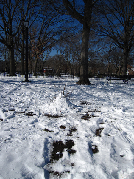 snowmound
