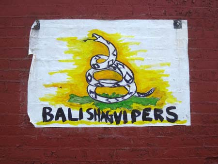 balishagvipers