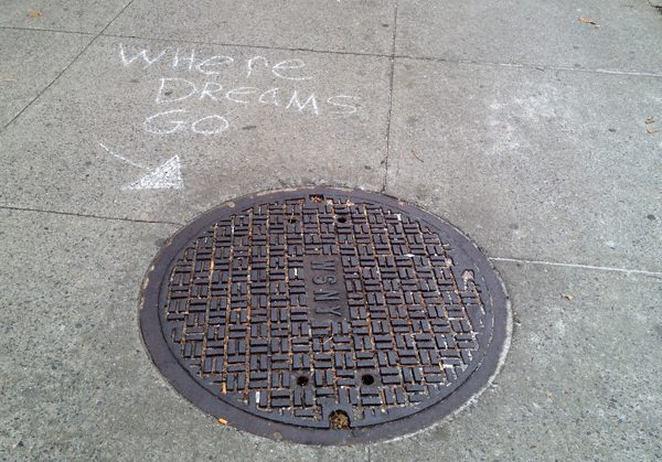 wheredreamsgoNYS