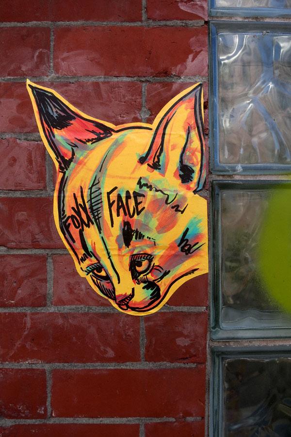 foxxface