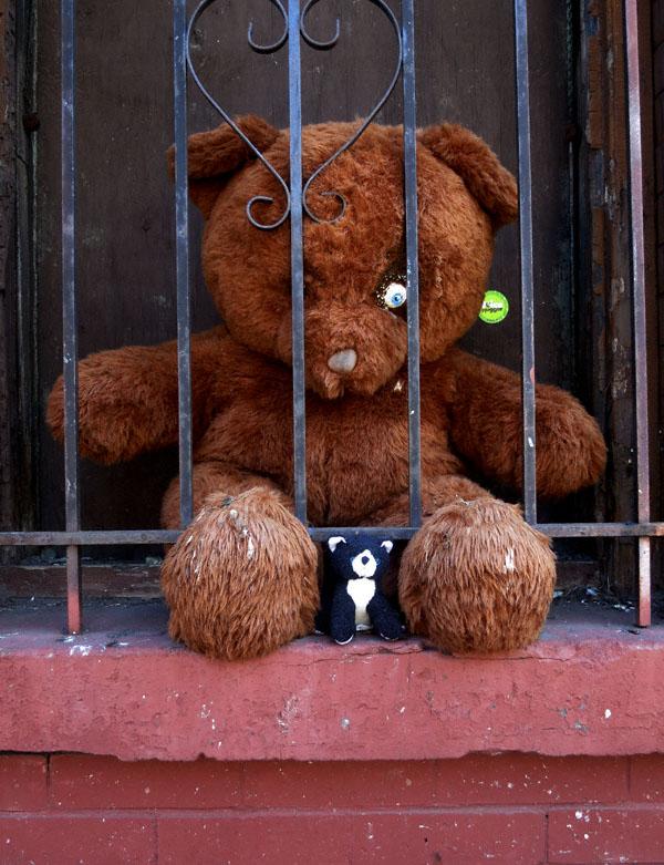 teddy8252013