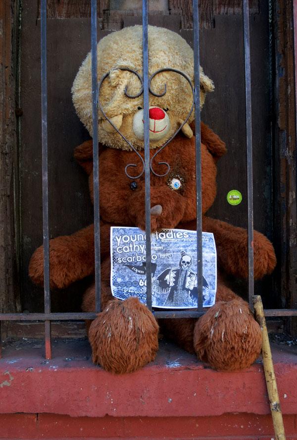 teddy10182013