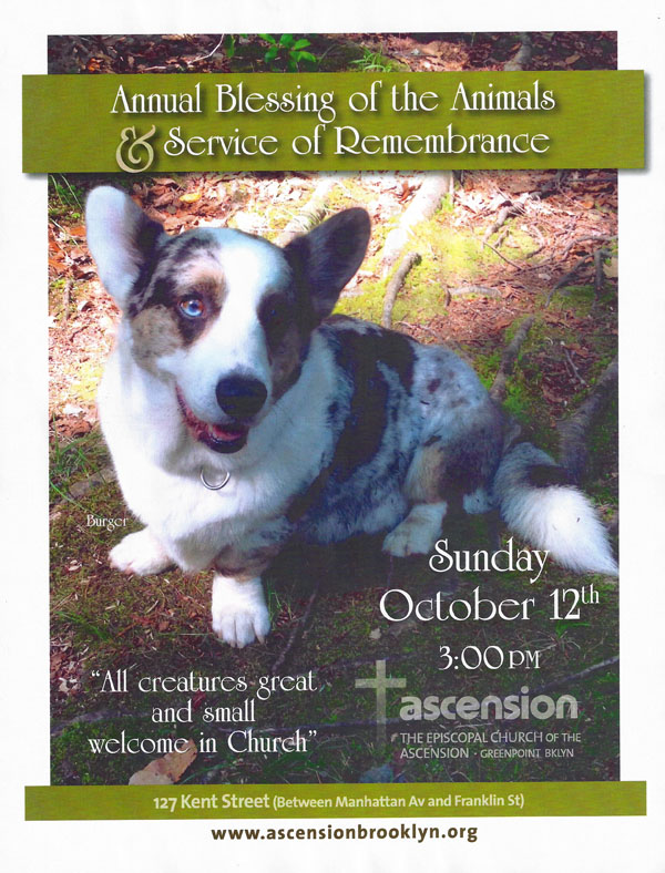 Annual Blessing of the Animals nys