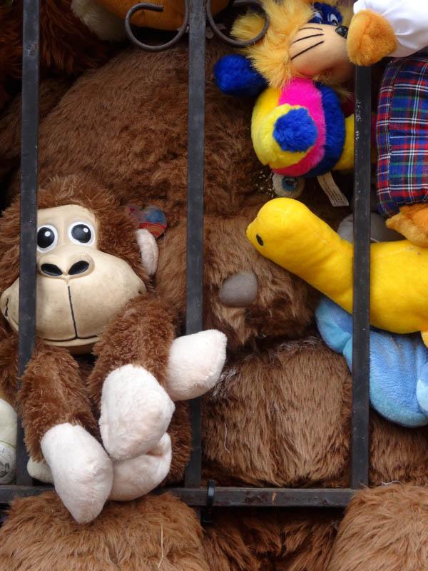 Prison Bear March 10 2015 nys