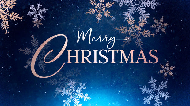 Merry Christmas from the NYS Firearms Association!