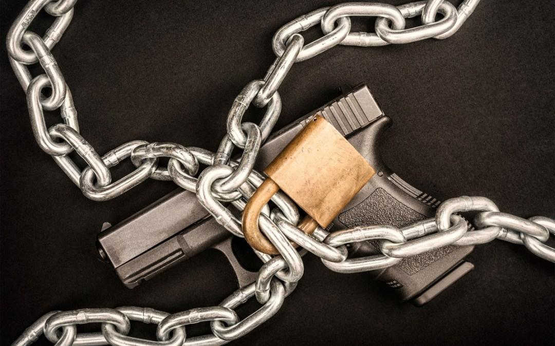 ALERT: Mental Health Gun Control Filed in Albany!
