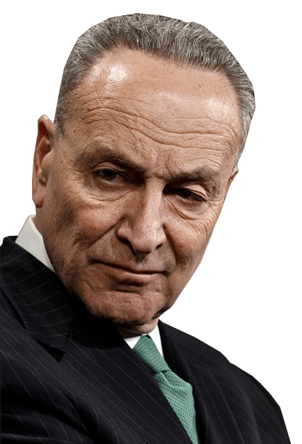 Tell Schumer that passing H.R. 8 will cost him the majority in 2022!