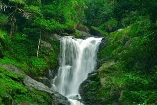 Abbey & Iruppu Falls