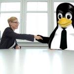 Perfil Linux que triunfa para encontrar trabajo.