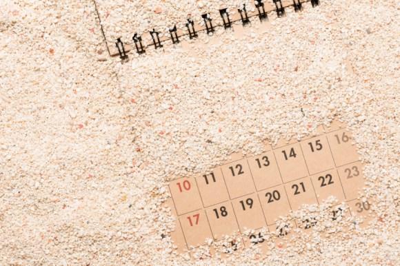Sandy calendar