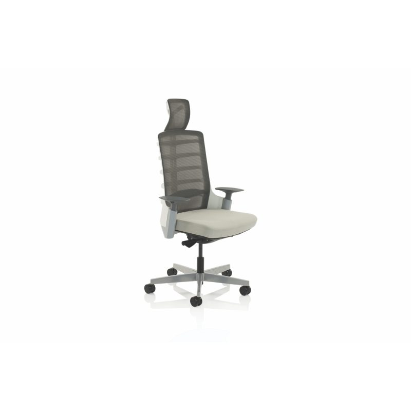 Exo Posture Chair Charcoal Grey Mesh Back With Light Grey Fabric Seat