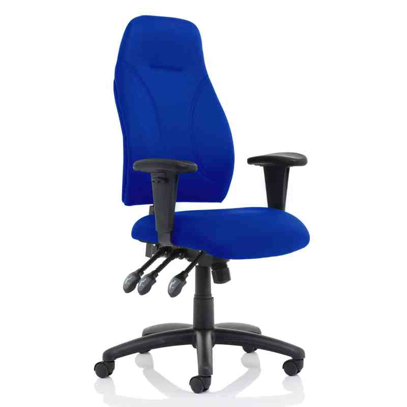 Esme Blue Fabric Posture Chair With Height Adjustable Arms