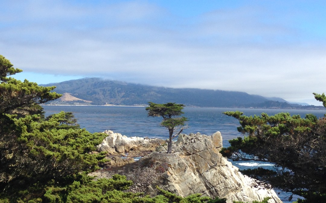 Days 37-39: California (Part 1)