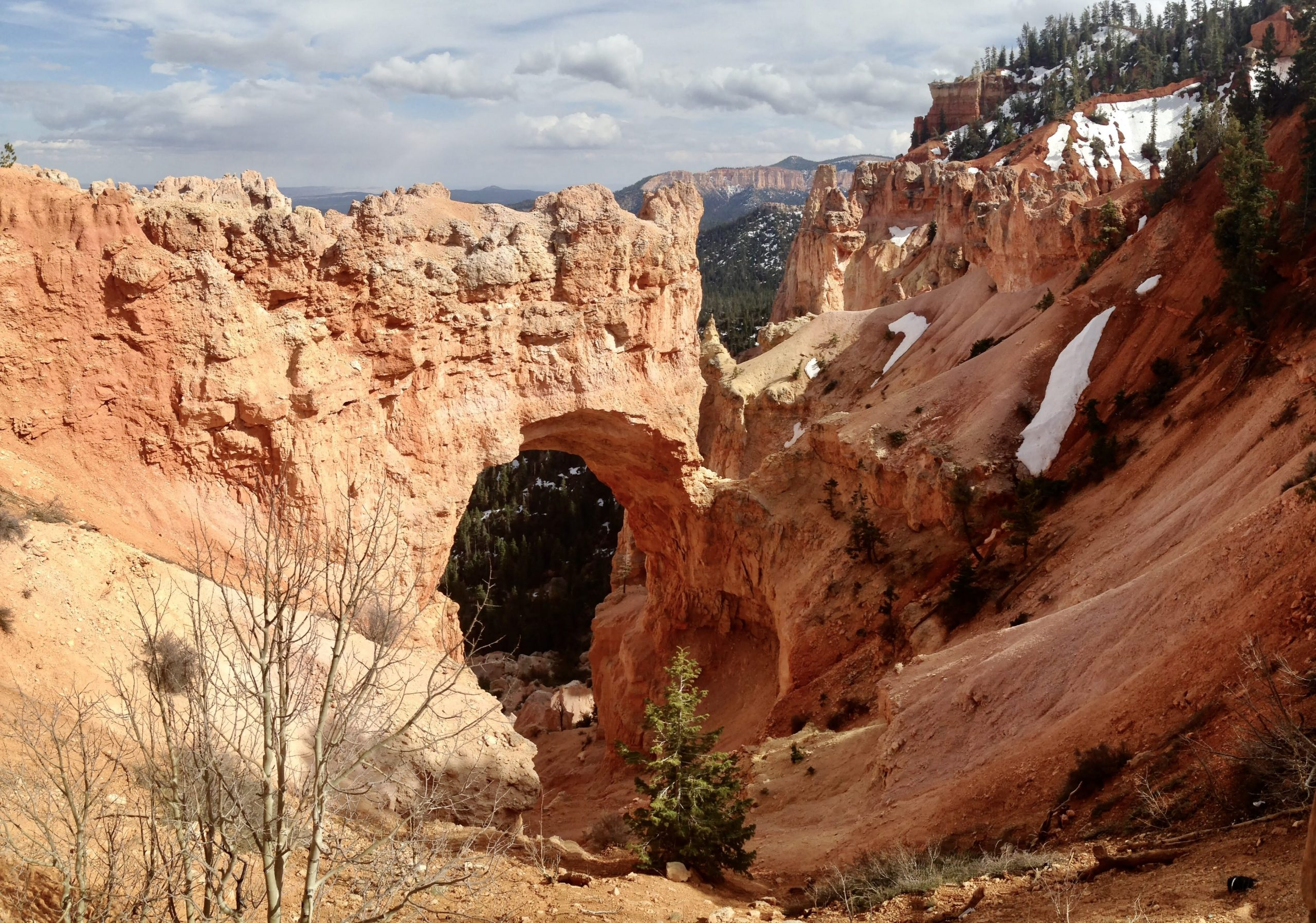 Natural Bridge at Bryce Canyon National Park in Utah