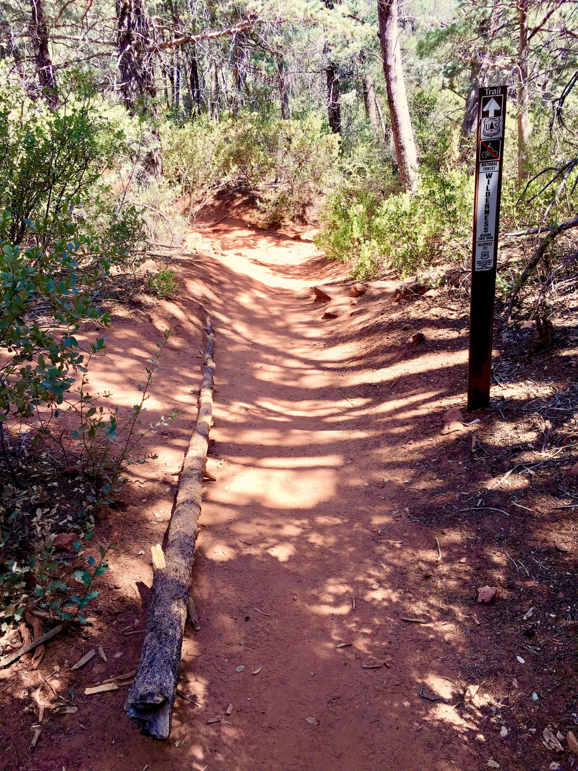 Trail to NOT Follow on Left Off Soldier Pass Trail to Soldier Pass Cave