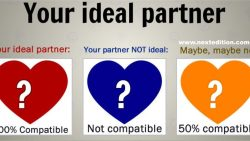 Who is Your Ideal Partner?